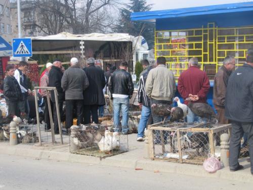 Wochenmarkt in Prizren